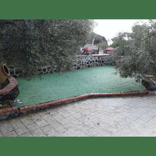 Villa Bahçesi (doğal tohum halısı)