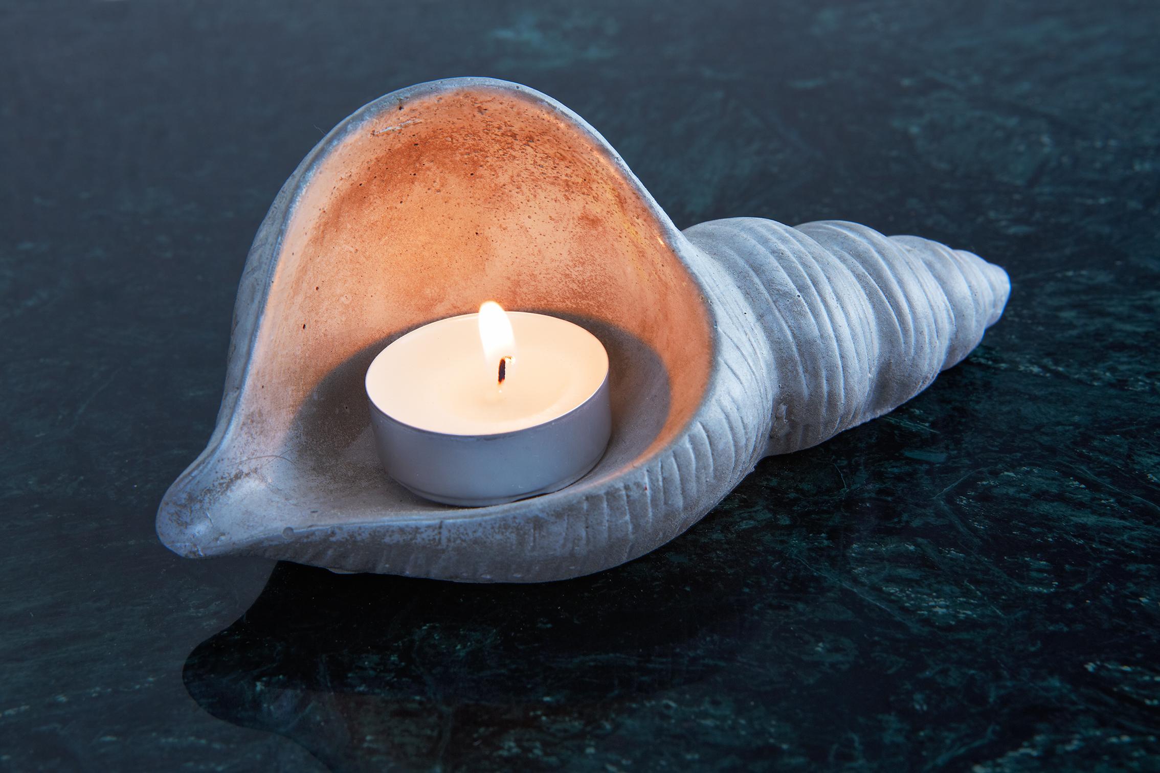 Beton Deniz Kabuğu Tealight